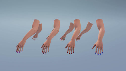 3D Realistic Hand and arm